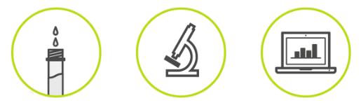 Proteintestkit von Cerascreen