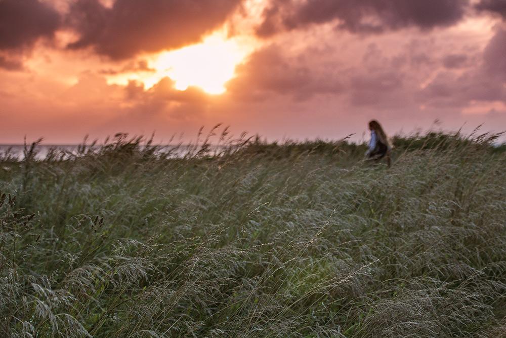 Tagesausflug-nach-Dänemark-Sonnenuntergang-Emmerlev-Klev-Schilf