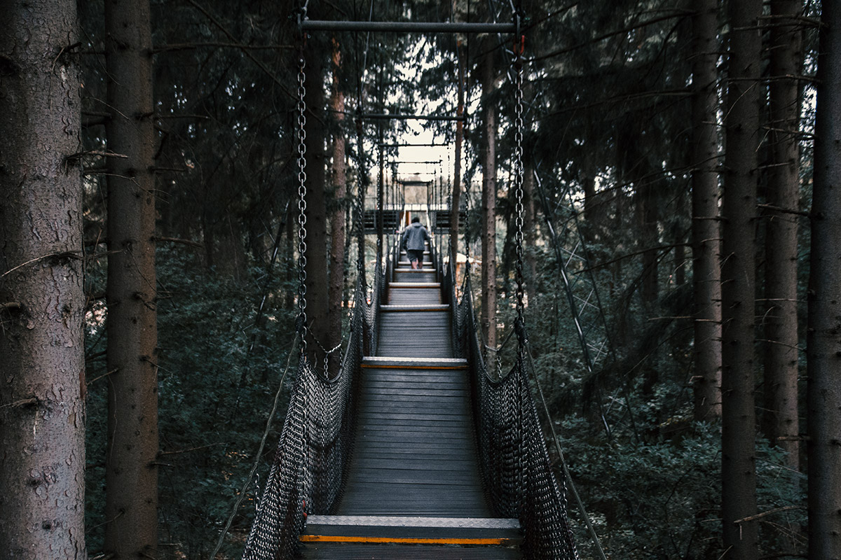 Serengeti Park Hängebrücke zur Aussichtsplattform im Wald