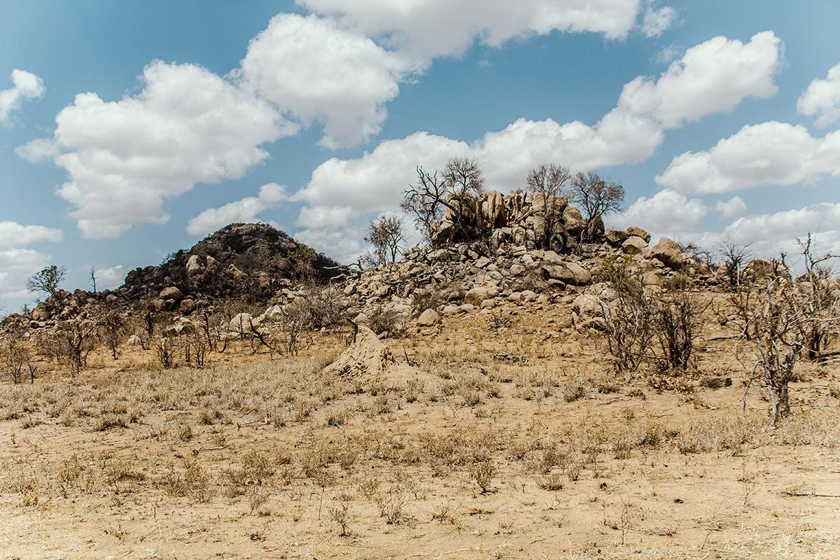 Krüger Nationalpark Landschaft