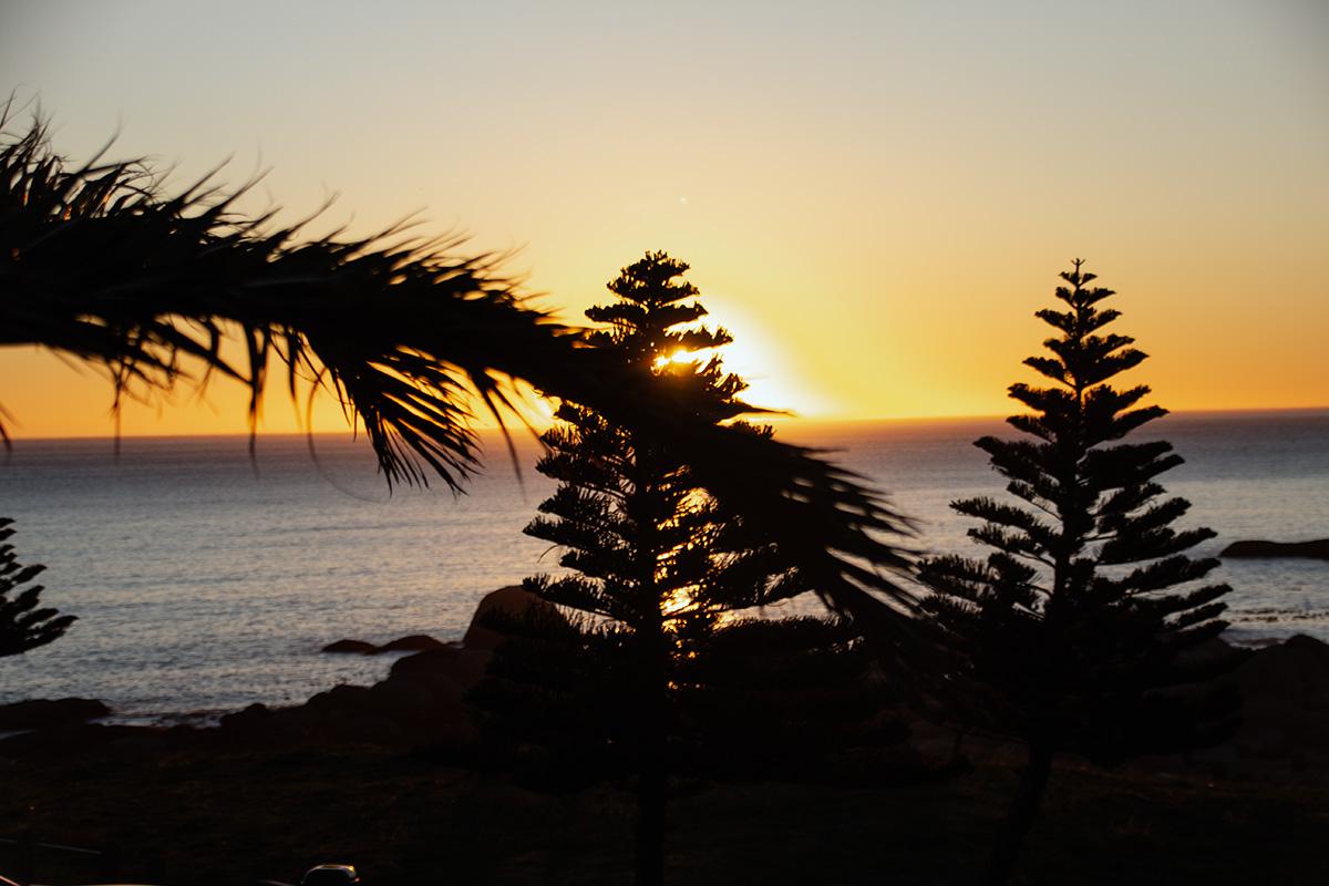 Kap der guten Hoffnung Kapstadt Camps Bay Sonnenuntergang Palme