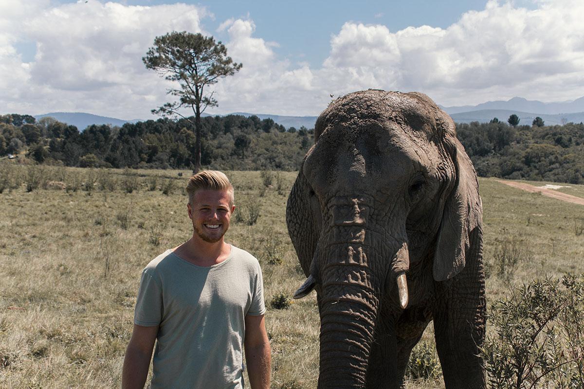 Knysna Elephant Park Elefant und ich