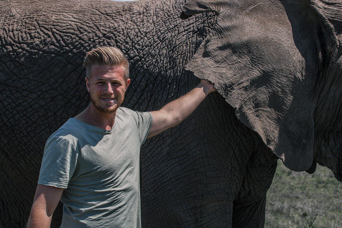 Knysna Elephant Park Tiede