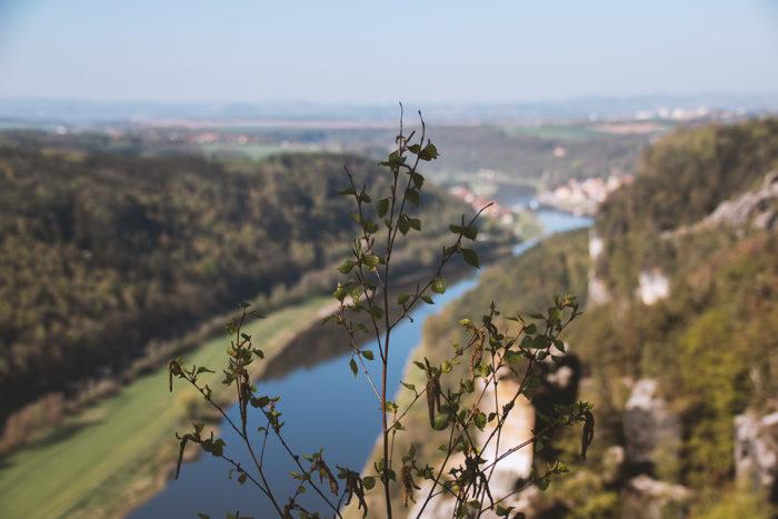 Die Elbe betrachtet vom Elbsandsteigengebirge